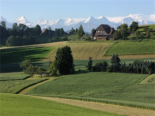 1-Day Bern - Capital & Countryside Tour
