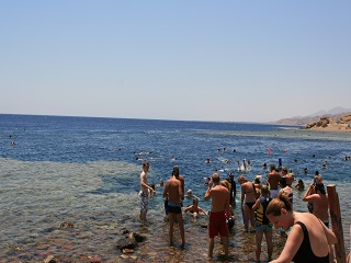 1-Day Giftun Island Snorkeling Tour from Hurghada