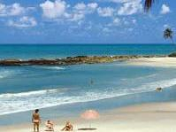 Southern Coast Beaches including Tambaba from Joao Pessoa - Group Tour Spanish and Portuguese