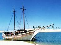 1-Day Sao Francisco River Nature Sanctuary Boat Trip from Maceio - Group Spanish and Portuguese