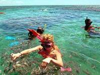 1-Day Tour to Maracajau and Parrachos Reef from Natal - Group Spanish and Portuguese