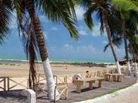 1-Day Tour to Pipa Beach from Natal - Group Spanish and Portuguese
