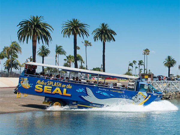 1-Day San Diego Seals Tour