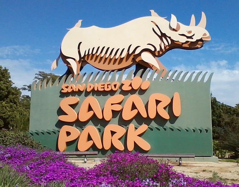 1-Day San Diego Safari Park Pass