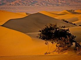 6-Day Death Valley, Grand Canyon, LV Tour  Package from San Francisco - LA Out