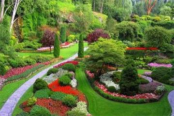 1-Day Victoria, Butchart Gardens Sightseeing Tour from Vancouver