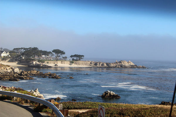 1 Day Monterey Bay, 17 Miles Scenic Drive Tour from San Francisco
