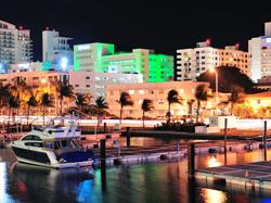 Miami Culinary Walking Tour - Dinner