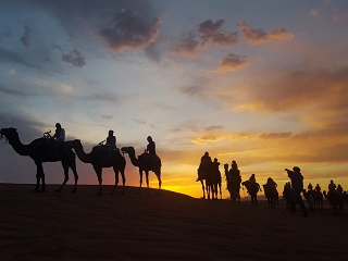 2-Day Zagora Desert Private Tour from Marrakech