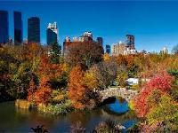 中央公园 (Central Park)