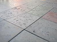TCL/Grauman's Chinese Theatre