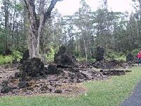 Lava Trees State Park