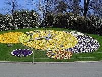 日内瓦花钟 (Flower Clock)