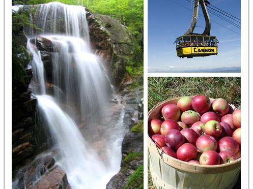 1-Day White Mountain Foliage, Flume Gorge and Fall Picking Tour from Boston