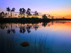 1-Day Everglades Park and Miami City Tour...
