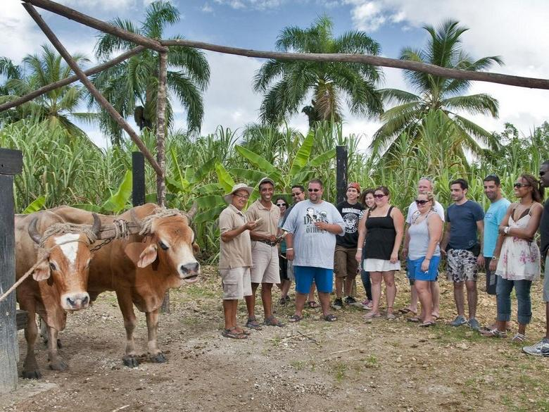 1-Day Bavaro Runners Experience Tour from Punta Cana