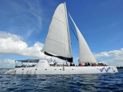 1-Day Saona Island Full Day Tour from Punta Cana