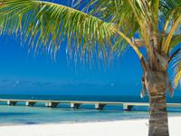 13-Day Key West, Miami, Orlando Theme Parks Tour  from Miami/Fort Lauderdale