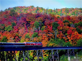 6-Day Canada Agawa Canyon Tour on The Train  from Toronto