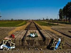 1-Day Auschwitz-Birkenau Museum Trip from Krakow...