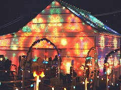 3-Day Busch Garden and Christmas Light Show Tour from New York/New Jersey