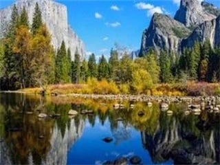1-Day Yosemite and Giant Sequoias Tour from San Francisco...