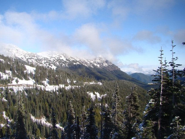 1-Day Olympic National Park Tour from Seattle/Renton...