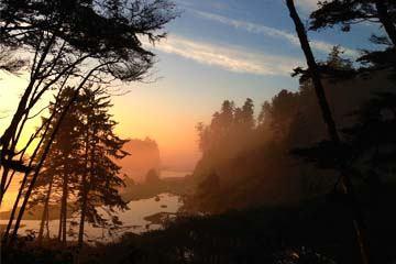 5日超值游-西雅图-雷尼尔火山-奥林匹克公园(西雅图机场接送)