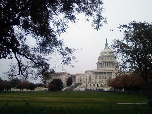 1-Day Washington DC City Tour