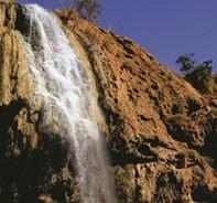 1-Day Hammamat Ma'in Hot Water Springs and Dead Sea Tour from Amman