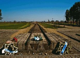 1-Day Auschwitz-Birkenau Museum Trip from Krakow