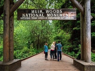 1-Day Napa Valley, Sonoma Wine Country, and Muir Woods Tour from San Francisco