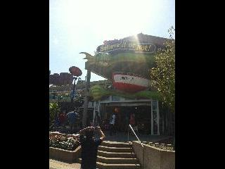 maryland, baltimore, ripleys believe it or not