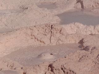 wyoming, yellowstone national park, yellowstone. mud volcano