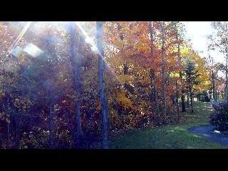 canada, montreal, quebec, fall foliage