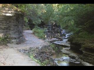 new york, watkins glen state park