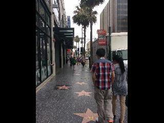 california, los angeles, hollwood walk of fame