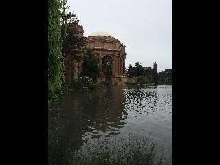 california, san francisco, palace of fine art