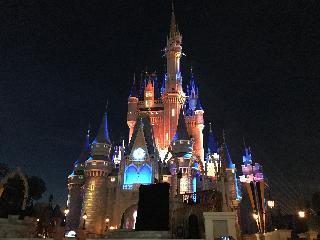magic kingdom; Orlando; theme park