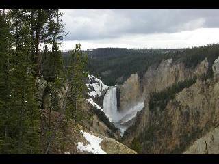 Yellowstone National Park; Lower Falls