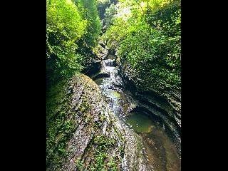 watkins glen; gorge trail