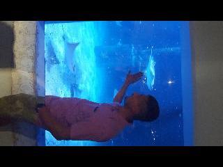 Aquarium CT