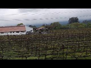 old Napa Valley