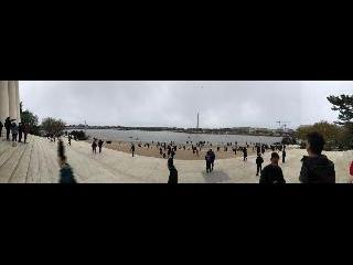 Cherry Blossom; Jefferson Memorial; Washington DC