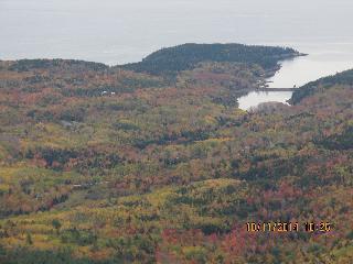 maine, acadia national park, fall foliage