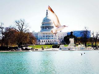 Iconic, landmark, Washington DC