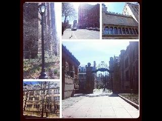 CT, Yale, Campus