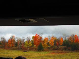 vermont, burlington, bus