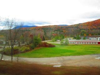 vermont, burlington, fall foliage, bus