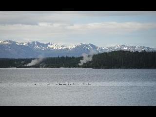 wyoming, grand teton national park